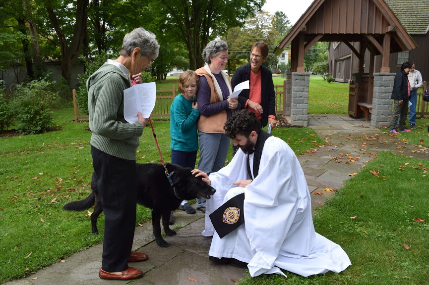The Rev. Brooks Cato offers a blessing to an older dog at St. Thomas' Church in Hamilton