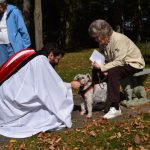 Animal Blessings around the Diocese